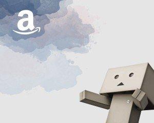 Competere contro Amazon con il proprio e-commerce